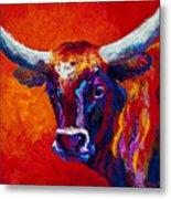 Longhorn Steer Metal Print