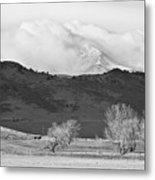 Longs Peak Snow Storm Bw Metal Print