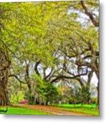 Longwood Plantation In Spring Glory Metal Print