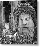Look From The Past Metal Print