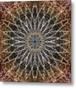 Look Into The Light Metal Print