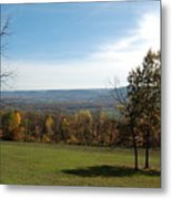 Looking At Fall Colors In The Field Metal Print