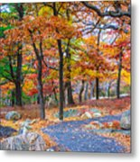 Looking Down A Trail On Bear Mountain New York Metal Print