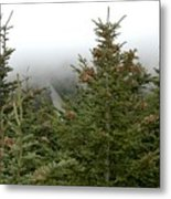 Looking Down From Mnt. Mitchell Metal Print
