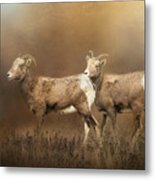 Looking For The Herd Metal Print