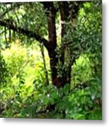 looking into the Jungle Metal Print