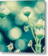 Looking Through Thoughts  Metal Print