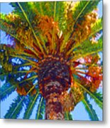 Looking Up At Palm Tree  Metal Print