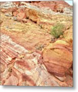 Looking Up From Wash 3 In Valley Of Fire Metal Print