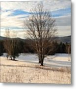 Looking West Late Afternoon Metal Print