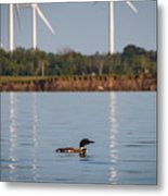 Loon And Windmills Metal Print