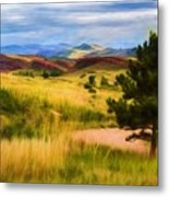 Lory State Park Impression Metal Print
