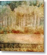 Loss Of Memory Metal Print by Tara Turner