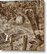 Lost Barn S Metal Print