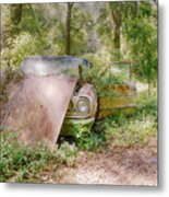 Lost Beauty Metal Print