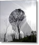 Lost Connection With Nature Metal Print