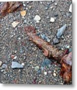 Lost In The Sand Metal Print