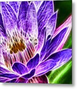 Lotus Close-up Metal Print