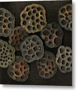 Lotus Pods Metal Print