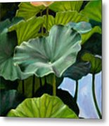 Lotus Rising Metal Print