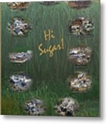 Louisiana Sugar Cane Poster 2008-2009 Metal Print