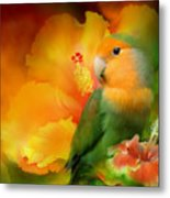 Love Among The Hibiscus Metal Print by Carol Cavalaris