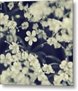Love And Lace Metal Print