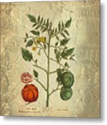 Love Apple Botanical  Metal Print