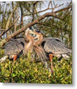 Love Birds - Great Blue Heron Metal Print