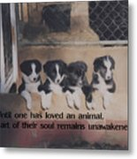 Love For Animals Metal Print by Smilin Eyes  Treasures