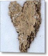 Love Found Everywhere  Metal Print