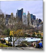 Love In Central Park Too Metal Print