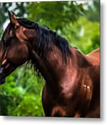 Love Of Horses Metal Print