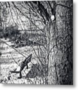 Love On A Tree Metal Print by CJ Schmit