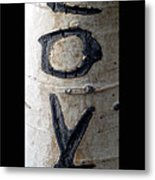 Love Written In The Trees 5 Metal Print