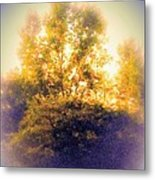 Lovely As A Summer Day Metal Print