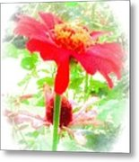 Lovely As A Summer's Dream Metal Print