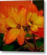 Lovely Flowers1 Metal Print