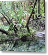 Lovely Lithia Springs Metal Print
