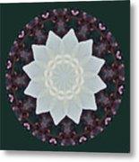 Lovely Lotus Metal Print