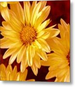 Lovely Mums Metal Print