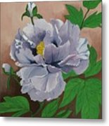 Lovely Peony Flower With Buds Metal Print