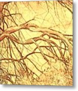 Lovely Twists In Nature Metal Print