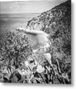 Lover's Cove Catalina Island Black And White Photo Metal Print