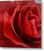 Love's Bloom Metal Print