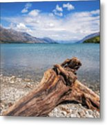 Low Angle View From The Rocky Dart River Bank At Kinloch, Nz Metal Print