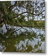 Low Country Days Metal Print