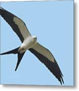 Low Flying Kite Metal Print