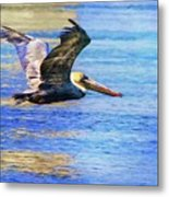 Low Flying Pelican Metal Print