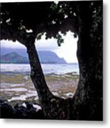 Low Tide And The Tree Metal Print
